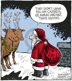 Comic Strip Dave Coverly  Speed Bump 2008-12-12 reindeer