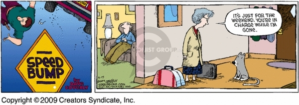 Comic Strip Dave Coverly  Speed Bump 2009-03-15 weekend
