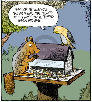 Eat up. While you were here, we moved all those nuts youve been hiding.