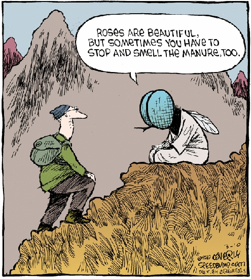 Comic Strip Dave Coverly  Speed Bump 2010-03-10 fly