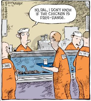 Comic Strip Dave Coverly  Speed Bump 2010-07-31 chicken