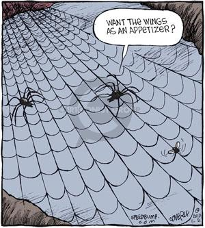 Comic Strip Dave Coverly  Speed Bump 2010-11-02 fly