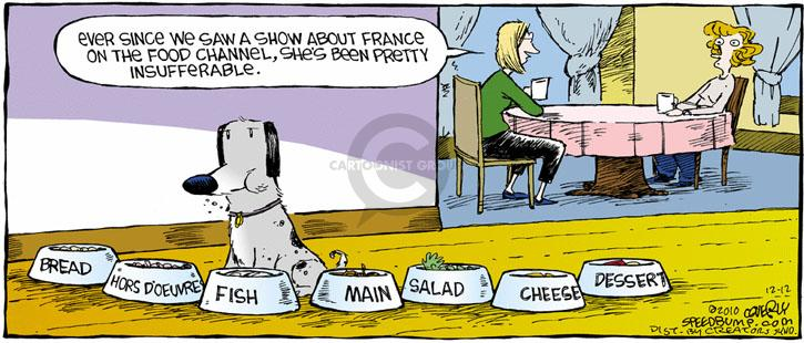 Comic Strip Dave Coverly  Speed Bump 2010-12-12 food channel