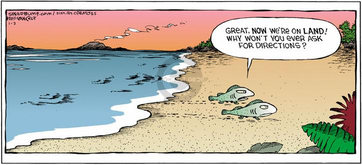 Comic Strip Dave Coverly  Speed Bump 2011-01-02 fish