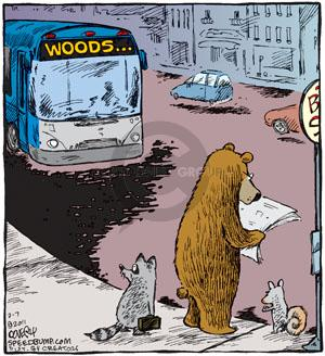 Comic Strip Dave Coverly  Speed Bump 2011-02-07 forest