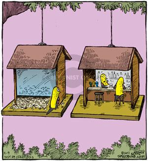 Comic Strip Dave Coverly  Speed Bump 2011-02-09 bird food