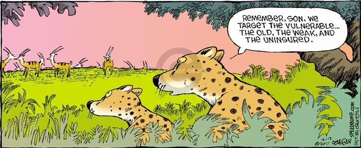 Comic Strip Dave Coverly  Speed Bump 2011-02-13 target