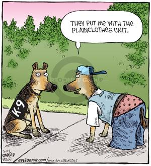 They put me with the plainclothes unit. K-9.