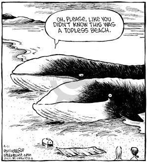 Cartoonist Dave Coverly  Speed Bump 2011-04-11 whale