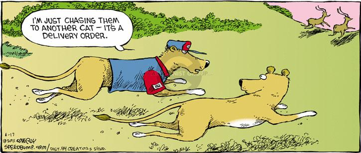 Comic Strip Dave Coverly  Speed Bump 2011-04-17 chasing cat