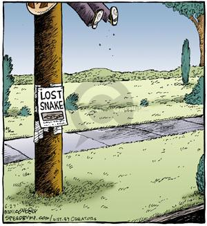 Comic Strip Dave Coverly  Speed Bump 2011-06-27 animal