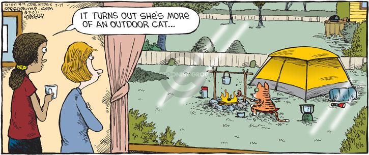 Comic Strip Dave Coverly  Speed Bump 2011-07-17 indoor cat