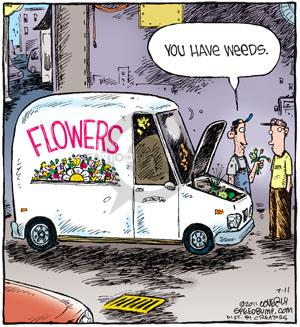 Comic Strip Dave Coverly  Speed Bump 2011-07-11 gardening