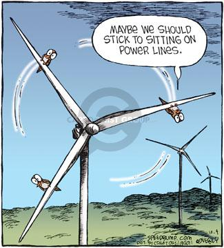 Comic Strip Dave Coverly  Speed Bump 2011-10-04 energy