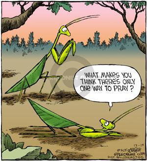 Comic Strip Dave Coverly  Speed Bump 2011-12-19 mantis