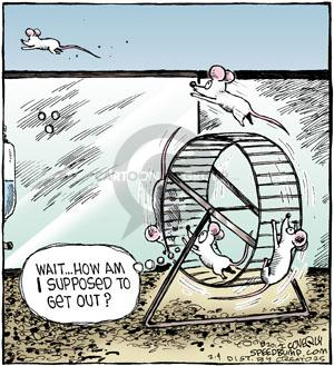 Comic Strip Dave Coverly  Speed Bump 2012-02-04 get