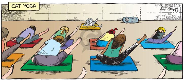 Comic Strip Dave Coverly  Speed Bump 2012-04-15 exercise