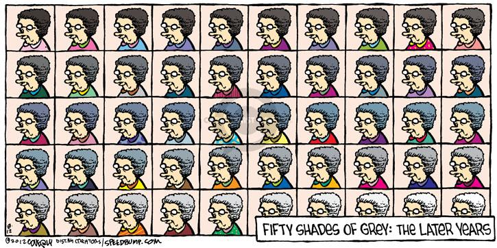 Comic Strip Dave Coverly  Speed Bump 2012-08-12 50 Shades of Grey