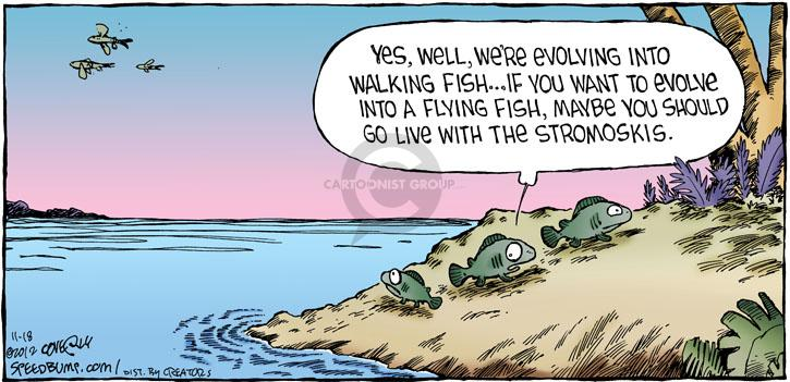 Comic Strip Dave Coverly  Speed Bump 2012-11-18 fish