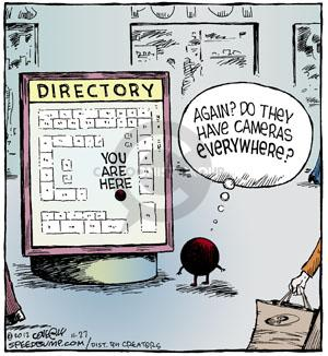 Comic Strip Dave Coverly  Speed Bump 2012-11-27 privacy