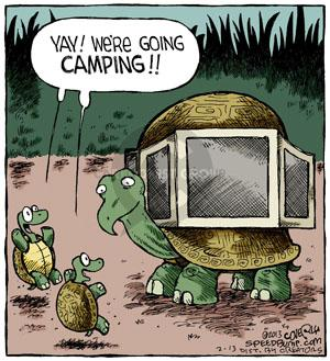 Comic Strip Dave Coverly  Speed Bump 2013-02-13 recreation