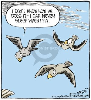 Comic Strip Dave Coverly  Speed Bump 2013-03-04 fly