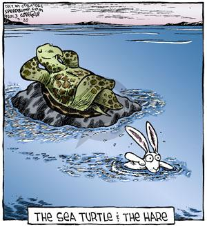 The Sea Turtle & The Hare.