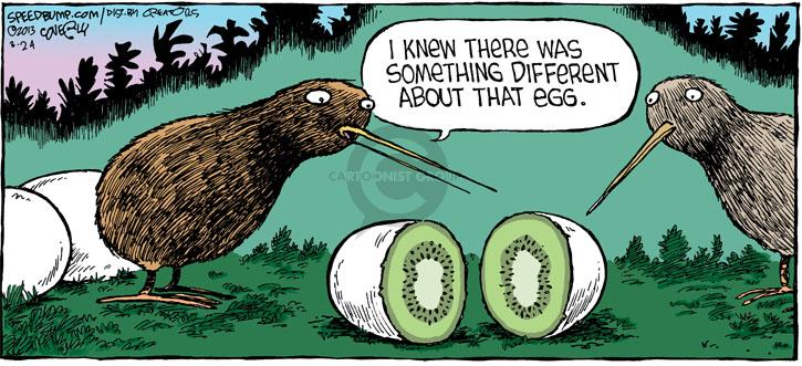Comic Strip Dave Coverly  Speed Bump 2013-03-24 different