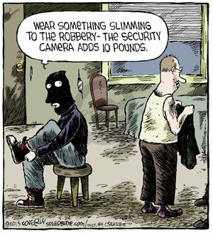 Comic Strip Dave Coverly  Speed Bump 2013-05-24 steal