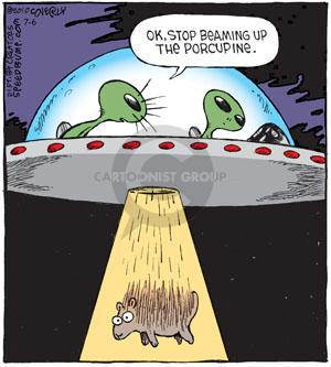Comic Strip Dave Coverly  Speed Bump 2013-07-06 porcupine