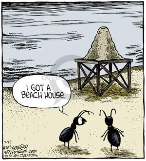 Comic Strip Dave Coverly  Speed Bump 2013-07-27 house