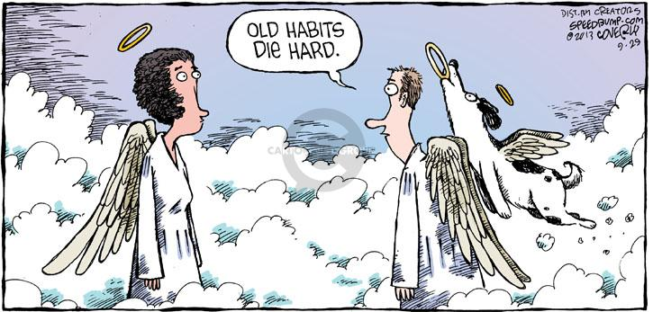Comic Strip Dave Coverly  Speed Bump 2013-09-29 old habit