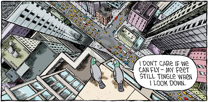 Comic Strip Dave Coverly  Speed Bump 2013-10-06 pigeon