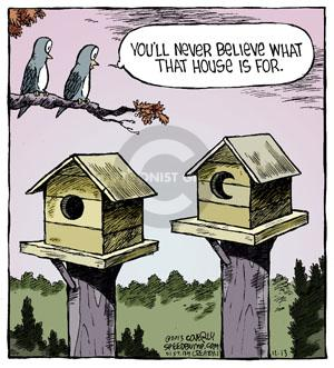 Comic Strip Dave Coverly  Speed Bump 2013-11-13 house