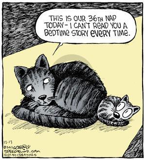 Comic Strip Dave Coverly  Speed Bump 2013-12-13 cat nap
