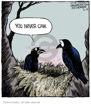 Comic Strip Dave Coverly  Speed Bump 2013-12-16 crow
