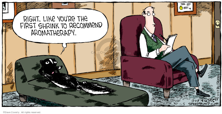 Comic Strip Dave Coverly  Speed Bump 2014-01-05 aromatherapy