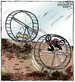 No Caption. (Two gerbils are seen each in an exercise wheel. One is running and the other is riding a motorcycle.)