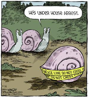 Comic Strip Dave Coverly  Speed Bump 2014-05-26 snail