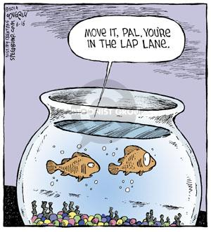 Comic Strip Dave Coverly  Speed Bump 2014-06-16 fish