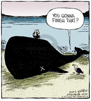 Cartoonist Dave Coverly  Speed Bump 2014-06-21 whale