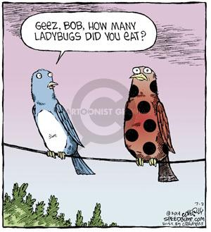 Comic Strip Dave Coverly  Speed Bump 2014-07-02 many