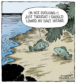 Comic Strip Dave Coverly  Speed Bump 2014-07-17 evolution