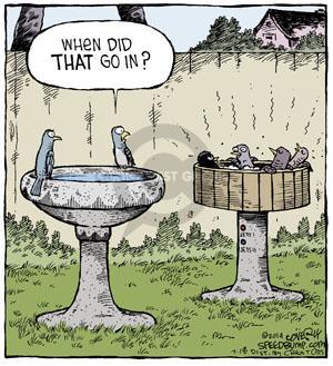 Comic Strip Dave Coverly  Speed Bump 2014-07-18 bird bath