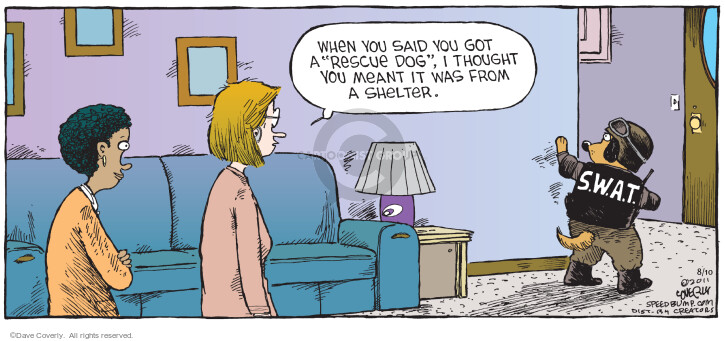 Comic Strip Dave Coverly  Speed Bump 2014-08-10 get
