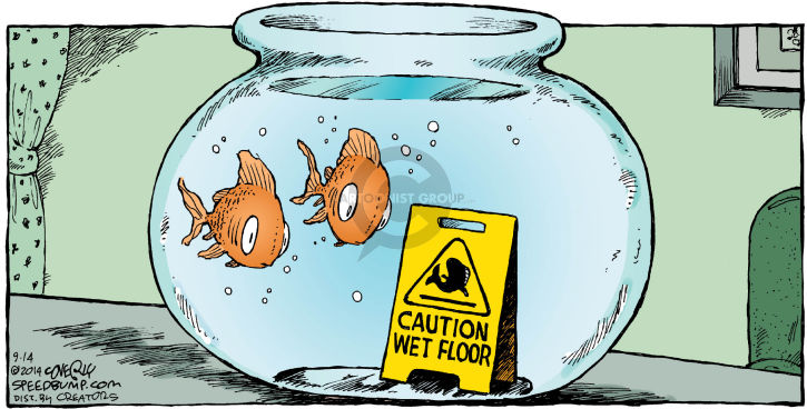 Comic Strip Dave Coverly  Speed Bump 2014-09-14 wet