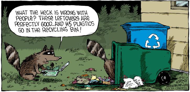 Comic Strip Dave Coverly  Speed Bump 2014-10-19 raccoon