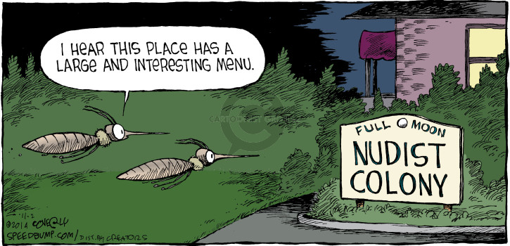 Comic Strip Dave Coverly  Speed Bump 2014-11-02 full