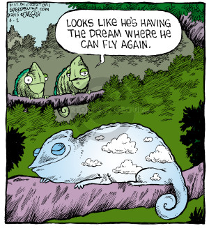 Comic Strip Dave Coverly  Speed Bump 2015-04-02 fly