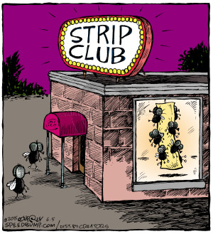 Comic Strip Dave Coverly  Speed Bump 2015-06-05 fly